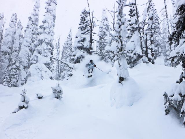 Deep backcountry powder turns with brundage ski resort cat skiing option